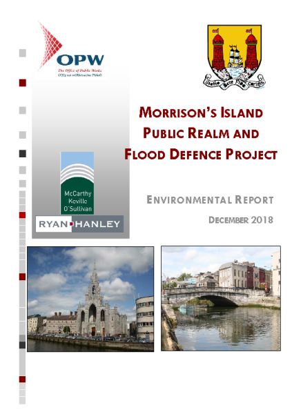 Appendix-E---Environmental-Report---Morrison-s-Island front page preview