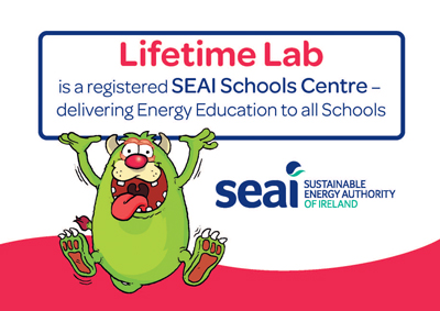 SEAI Primary Energy Workshop